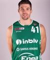 Ivica Radic